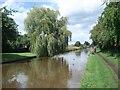 SO9465 : Worcester & Birmingham Canal by Trevor Rickard