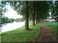 SO8456 : Riverside walk at Pitchcroft by Trevor Rickard