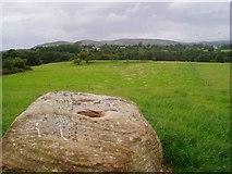 M2998 : Bullan Stone  at Carrowgalda by Pamela Norrington