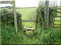 SJ5374 : Stile on the Eddisbury Way by David Quinn