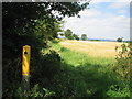 TL1145 : Line of footpath towards Cople from Greensand Ridge Walk footpath by ian saunders