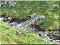 NS2359 : Largs, Gogo Glen Footbridge by william craig
