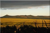 NJ7230 : Farmland with view towards Bennachie from The Glen by Kerry