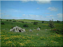 N7091 : Giant's Grave, Cornaville North, Co. Meath by Kieran Campbell