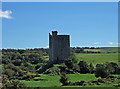 W2973 : Castles of Munster: Carrigaphooca, Cork by Mike Searle