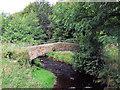 SE0137 : Footbridge over the River Worth near Lumbfoot by David Spencer