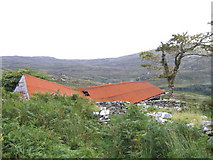V9280 : Old roof on the Old Kenmare Road by Ian Macnab