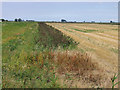 TL3192 : Fenland landscape from Benwick Road, Whittlesey, Cambs by Rodney Burton
