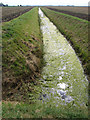 TL3293 : Drain southwest of Jones's Drove, Whittlesey, Cambs by Rodney Burton