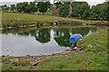 SD6725 : Pond by Heys Lane by Mr T