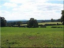SJ6928 : Near Lockleywood by Geoff Pick