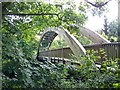 SJ1006 : Footbridge over Afon Banwy at Llanfair Caereinion by Maigheach-gheal