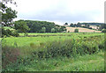 SJ9726 : Grazing Land by the River Trent, Weston, Staffordshire by Roger  Kidd