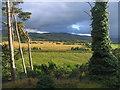 NH7500 : Evening light across Strathspey by M J Richardson