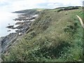 SW8734 : Coast path south of Portscatho by Trevor Rickard