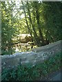 SO6289 : Bridge over Rea Brook by planetearthisblue
