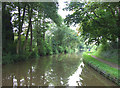 SJ8458 : Macclesfield Canal, near Ackers Crossing, Cheshire by Roger  Kidd