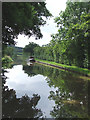 SJ8458 : Macclesfield Canal, near Ramsdell Hall, Cheshire by Roger  Kidd