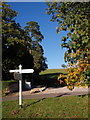 Dist:0.1km<br/>The signpost and yellowing tree (hornbeam?) are on a small grassy island at this T-junction of lanes. The trees on the left are in the churchyard of [[581386]], and a footpath to the Old Dawlish Road runs up the hill just inside it. The sun renders the left-hand destination illegible - it's Kennford.
