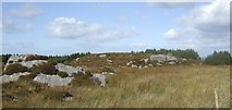 R4690 : Rocky outcrop near Ballinruan by Jonathan Billinger