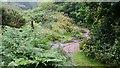 SW7343 : A Cornish Mining Walk by Alan Walker