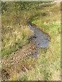 SD7319 : Broadhead Brook by liz dawson