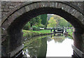 SJ9151 : Stockton Brook Top Lock and Bridge,  Caldon Canal, Staffordshire by Roger  Kidd