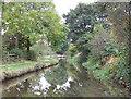 SJ9048 : Caldon Canal, Abbey Hulton, Staffordshire by Roger  Kidd