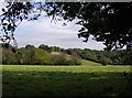 SU6984 : View towards Witheridge Hill by Graham Horn