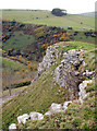 SK2274 : Limestone outcrop above Coombs Dale by Roger Temple