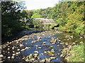 NS3155 : Footbridge, River Garnock by wfmillar