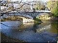 SO1998 : Caerhowel Bridge over the Severn by Penny Mayes