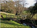 SO9094 : Footbridge over Penn Brook, Staffordshire by Roger  Kidd