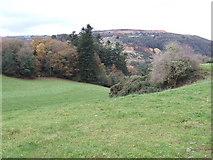 T2081 : Kilcashel Hill by Jonathan Billinger