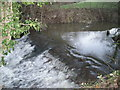 SJ6102 : Weir in Sheinton Brook by Row17