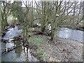 SO3358 : View upstream from Hunton Bridge by Jonathan Billinger