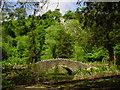 ST5578 : Footbridge, Blaise Castle Estate. by Colin Park