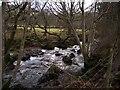 SN7566 : No footbridge by Rudi Winter