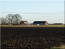 TL3896 : West Fen Farm by Ian Simons