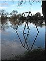 SO5924 : Swings in the floodwater : Week 2
