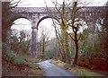 SX0557 : Viaduct, Luxulyan by Humphrey Bolton