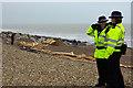 TQ1803 : South Lancing beach - a lot of wood : Week 3