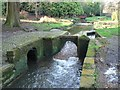 SZ0791 : Bournemouth Gardens: intriguing weir by Chris Downer