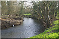 SP0957 : River Arrow, Alcester by Stephen McKay