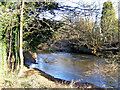 SO8274 : River Stour north of Hoo Brook by P L Chadwick