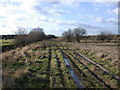 TL4967 : Fieldside track near Waterbeach Airfield by Keith Edkins