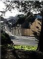 SX9164 : Ellacombe Road, Torquay : Week 4