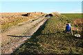 TL5551 : Rat Hall Farm track by Duncan Grey