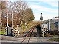 SN6180 : Vale of Rheidol Railway track at Glanyrafon by John Lucas