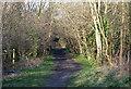 SJ8900 : Dismantled Railway, Aldersley, Wolverhampton by Roger  Kidd